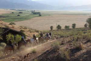 Ranch Activities - Horseback Riding