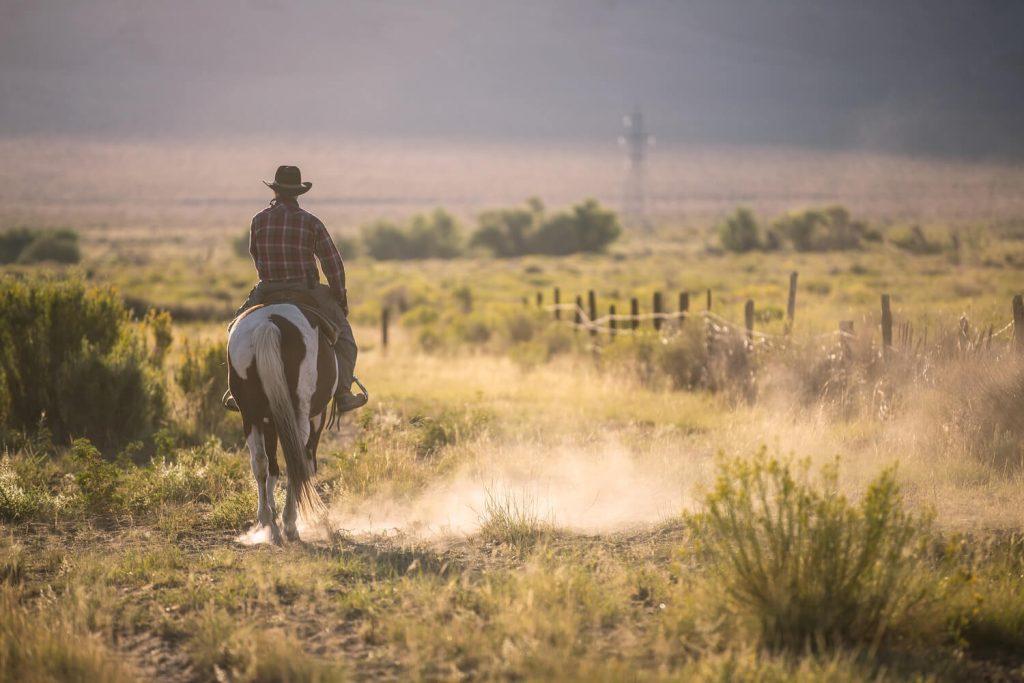 A wrangler rides into the distance in rural California.